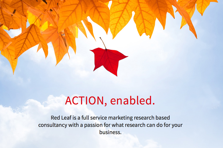 Website design and hosting for Red Leaf Research